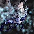 mariposa-lumeceu-mascote-batalha-warcraft